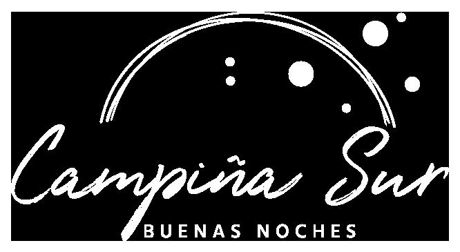 Logo-campinasur