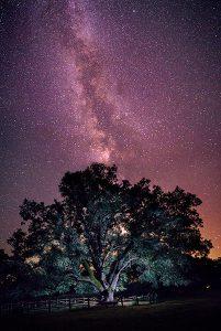 paisaje de estrellas, un viaje a través del cielo